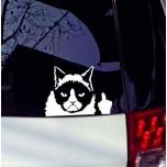 KLEEPS KURI KASS BAD CAT